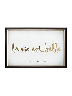 La Vie Est Belle Metallic Framed Print Wall