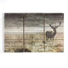 Graham & Brown Highland stag print on wood