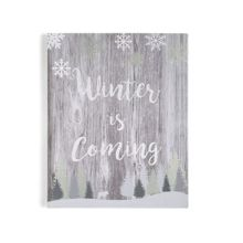 Graham & Brown Winter is coming canvas