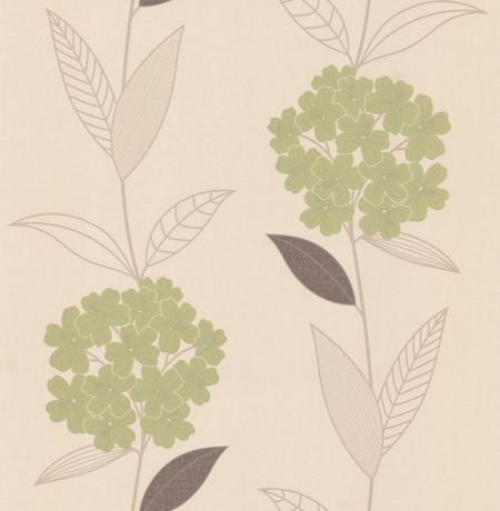 Graham & Brown Cream/olive symmetry essence wallpaper
