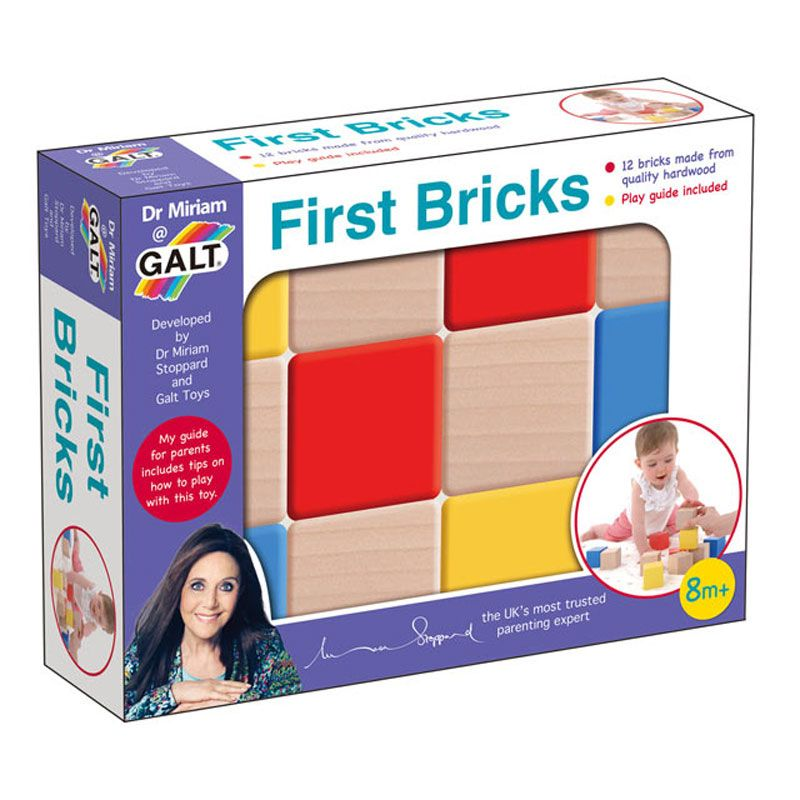 Dr Miriam Galt First Bricks