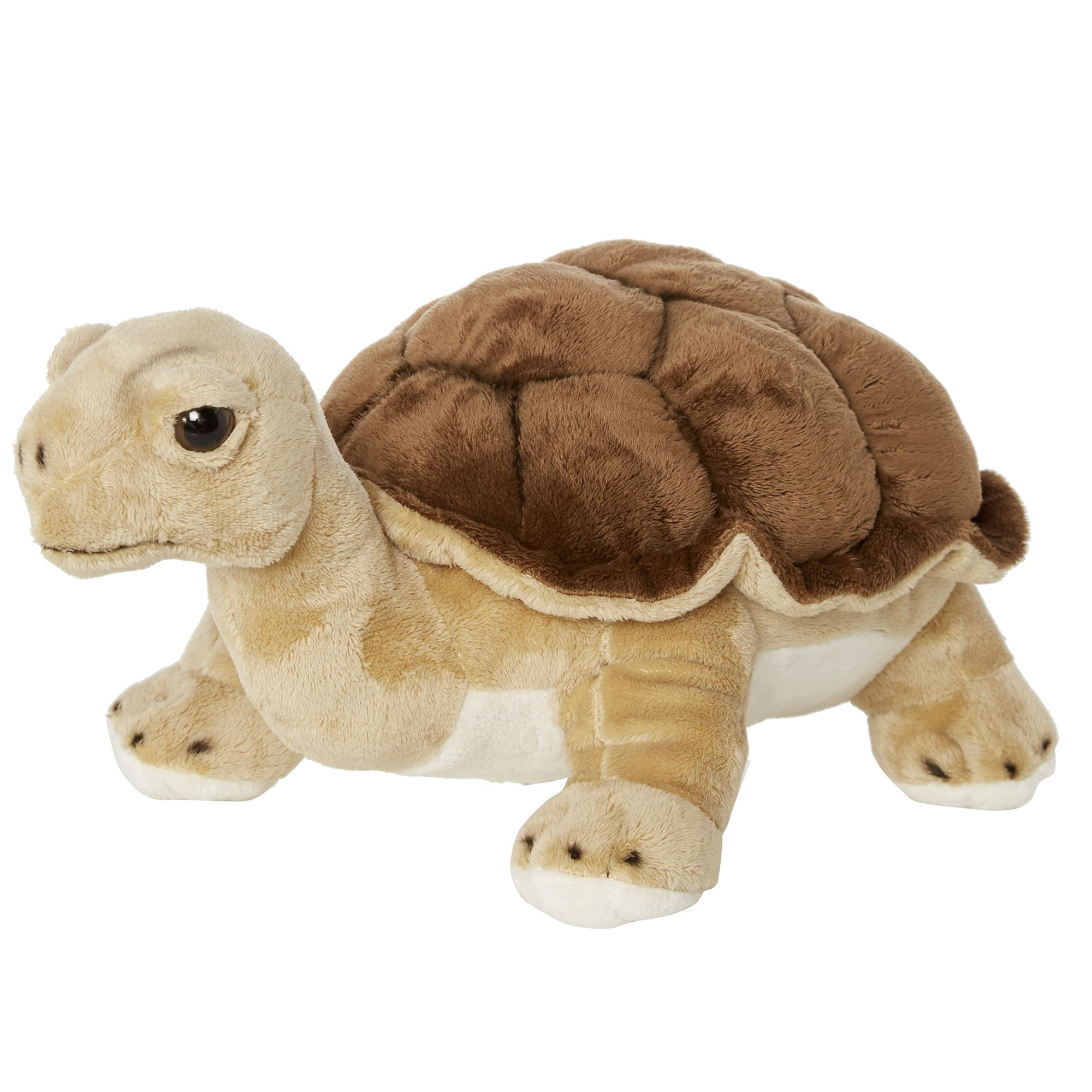 Soft Toys Product : Hamleys hector land turtle soft toy £ octer
