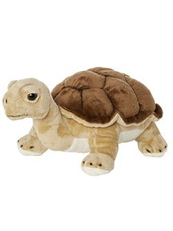 Hector Land Turtle Soft Toy