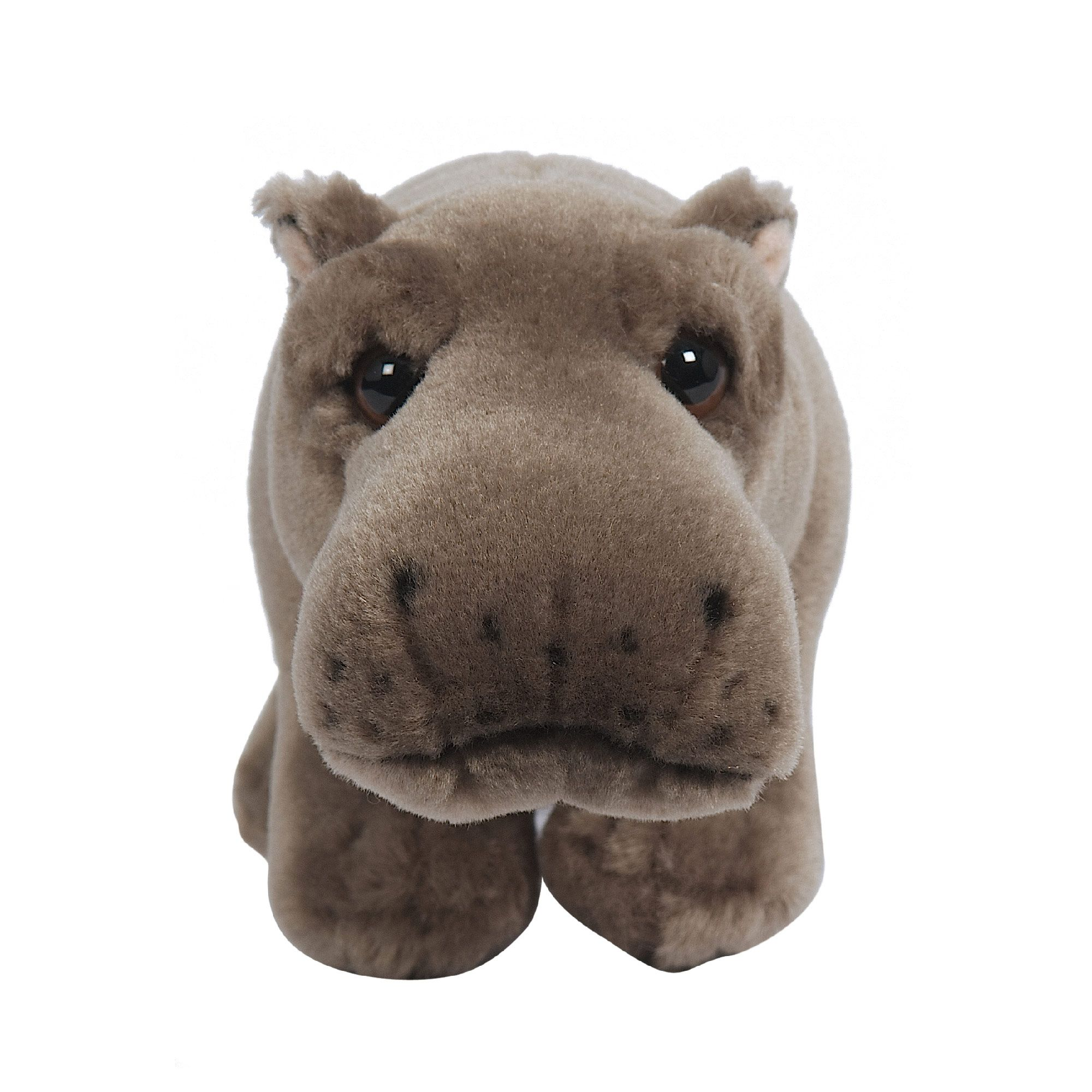 Image of Hamleys Baby Haris Hippo Soft Toy