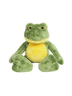 Quirky Frog Soft Toy