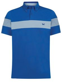 Wolsey Stripe Regular Fit Polo Shirt