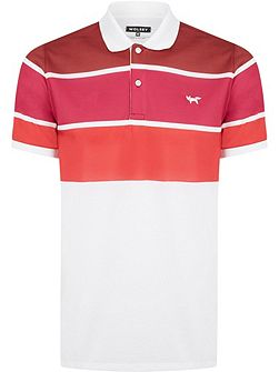 Three Colour Stripe Polo