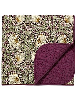 Pimpernel 265X260cm throw aubergine