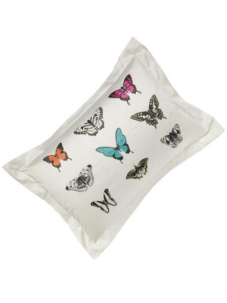 Harlequin Papilio butterfly oxford pillowcase