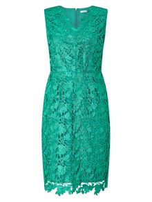 Precis Petite Petite Dhalia Lace Shift Dress