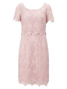 Jacques Vert Petite Ditsy Lace Dress