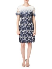 Precis Petite Petite Connie Lace Shift Dress