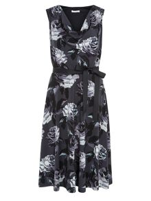 Blue Rose Print Dress