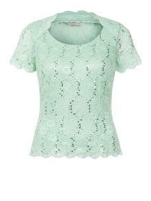 Petite Scoop Neck  Lace Top