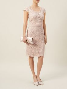 Petite Elegant Lace Dress