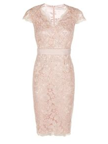 Petite Corded Lace Dress