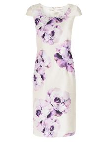Petite Placement Print Dress