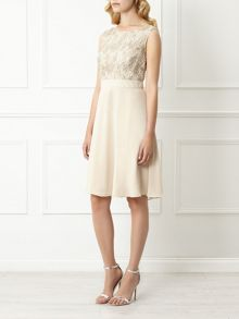 Sequin Lace Bodice Dress
