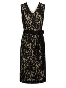 Lace V Neck Shift Dress