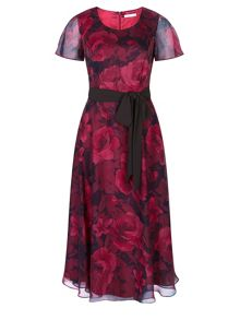 Cationic Rose Print Dress