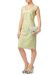 Petite Lace V Neck Dress