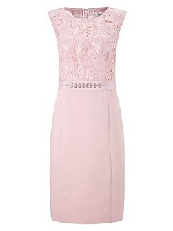 Pink Lace Bodice Shimmer Dress