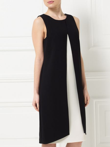 Precis Petite Jeff Banks Black Swing Dress