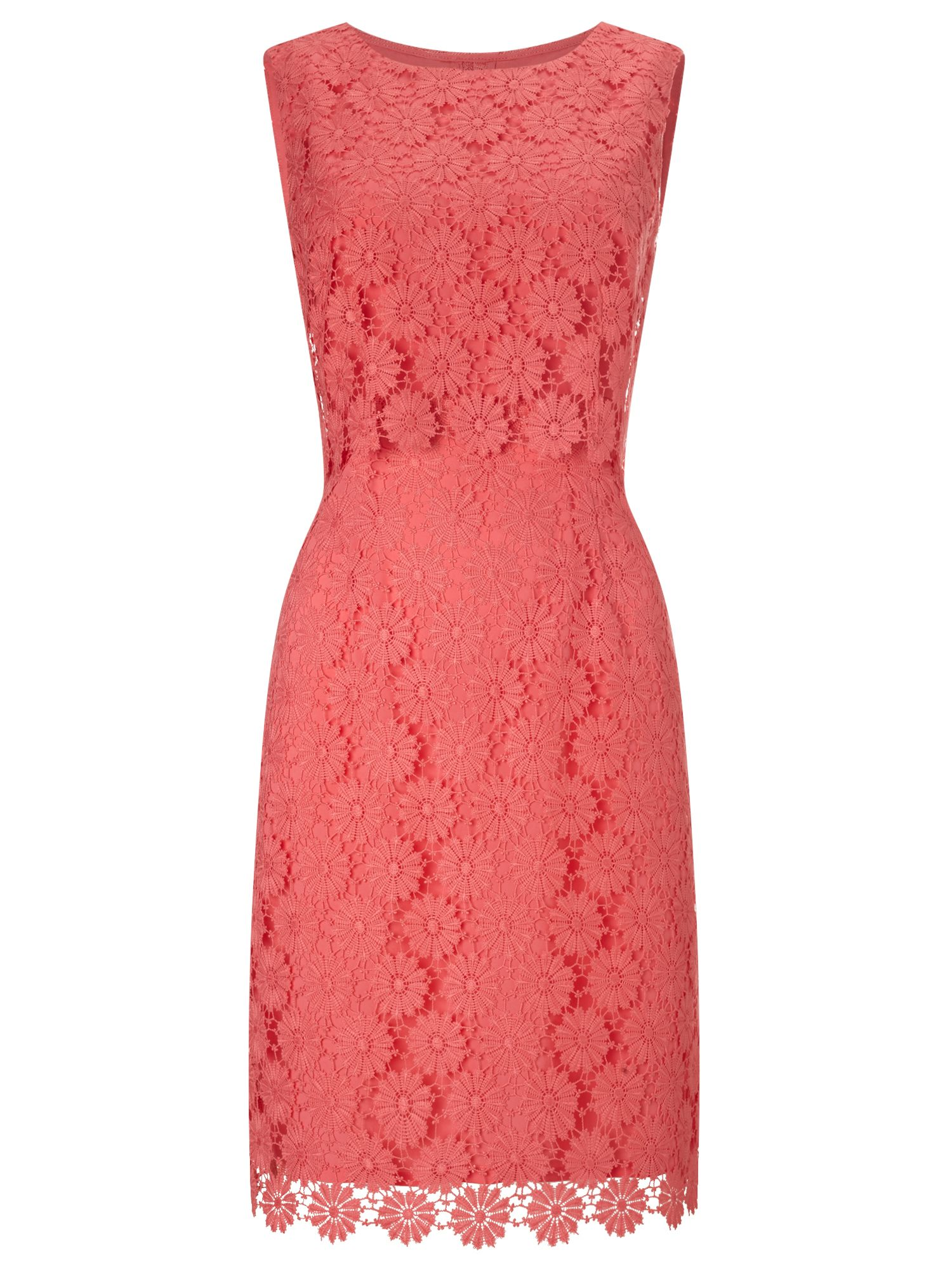 Precis Petite Jeff Banks Lace Shift Dress, Pink
