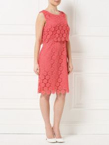 Precis Petite Jeff Banks Lace Shift Dress