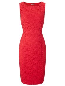 Precis Petite Coral Jasmin Lace Dress