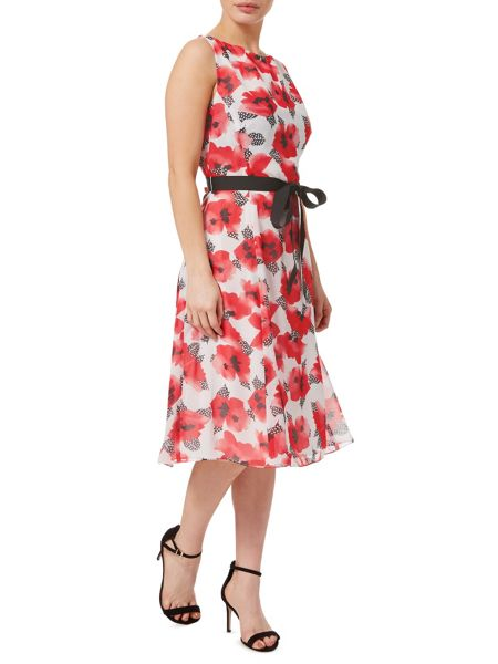 Precis Petite Polka Dot Feather Print Dress