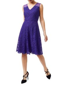 Precis Petite Scarlett Lace Full Skirt Dress