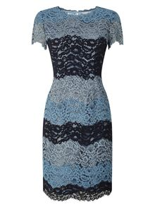 Precis Petite Cady Stripe Lace Dress