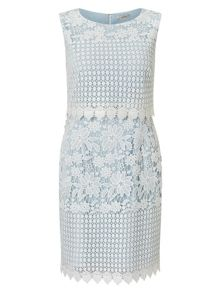 Precis Petite Abra Lace Dress