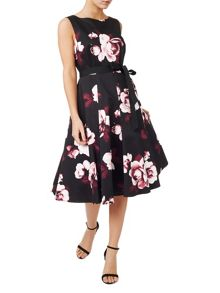 Precis Petite Dana Printed Flared Dress