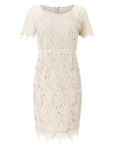 Jacques Vert Petite Leaf Lace Dress