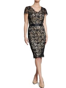Lace dress with grosgrain waistband