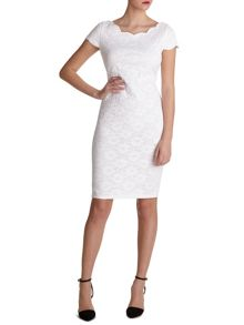 Corded lace knit dress with scallop