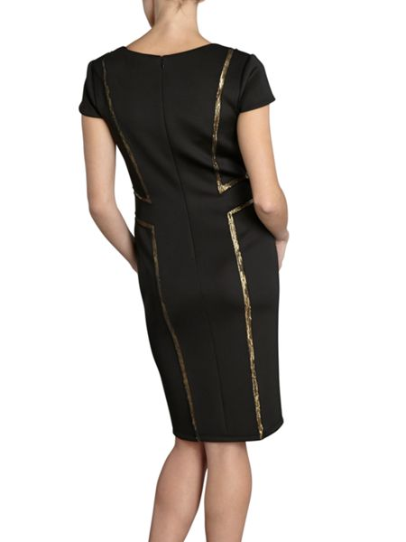 Gina Bacconi Scuba dress with sequin insert