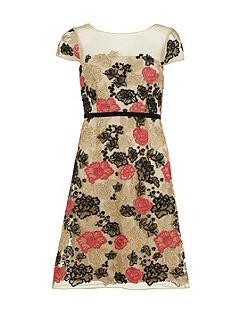 Multi colour embroidered net dress