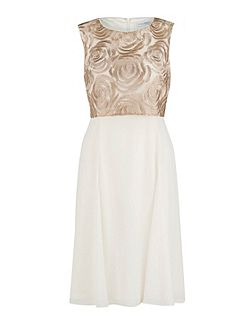 Rose embroidery and chiffon dress