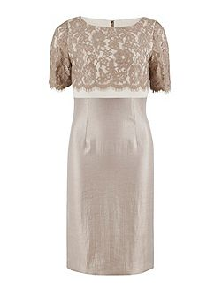 Scallop flower lace and shimmer dress