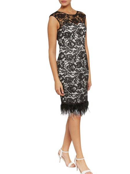 Gina Bacconi Lace dress with feathered trim