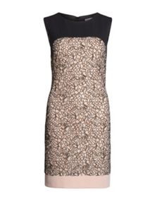 Gina Bacconi Dainty Embroidered Lace Panel Dress