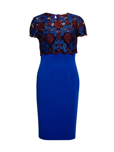 Gina Bacconi Corded embroidery lace overtop and dress