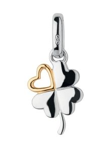 Lucky in love charm