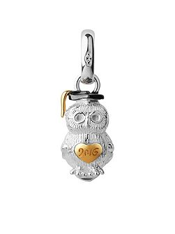 Sterling silver 2016 graduation owl charm