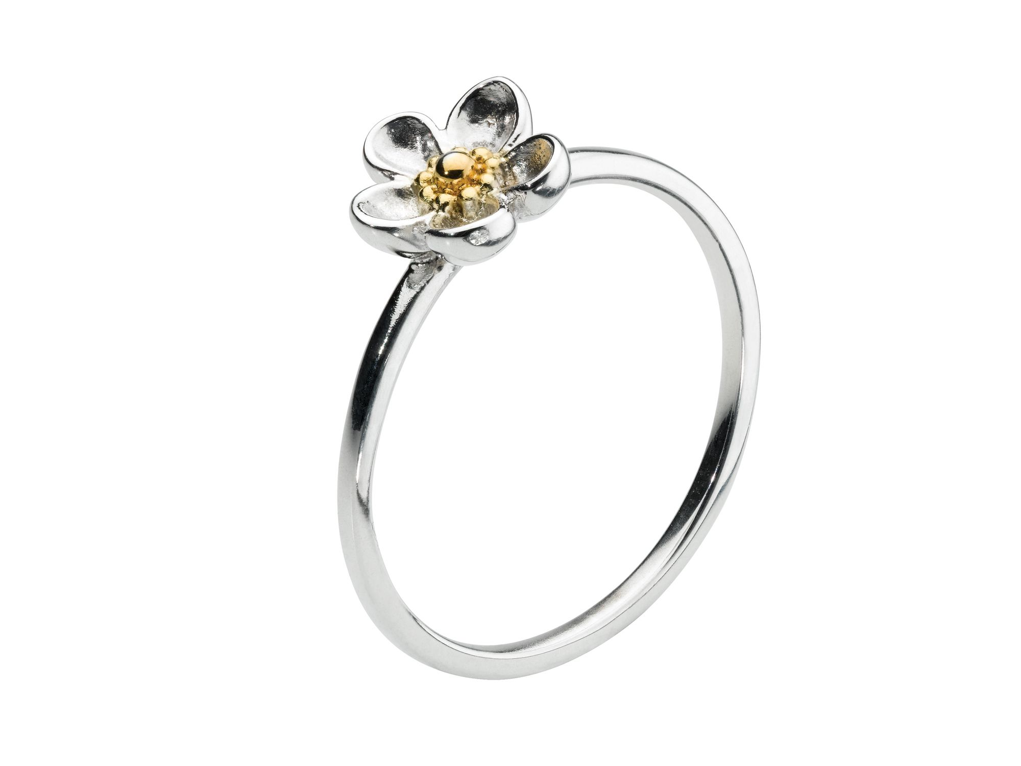 Enchanted Rose Ring with 18ct Gold Plate