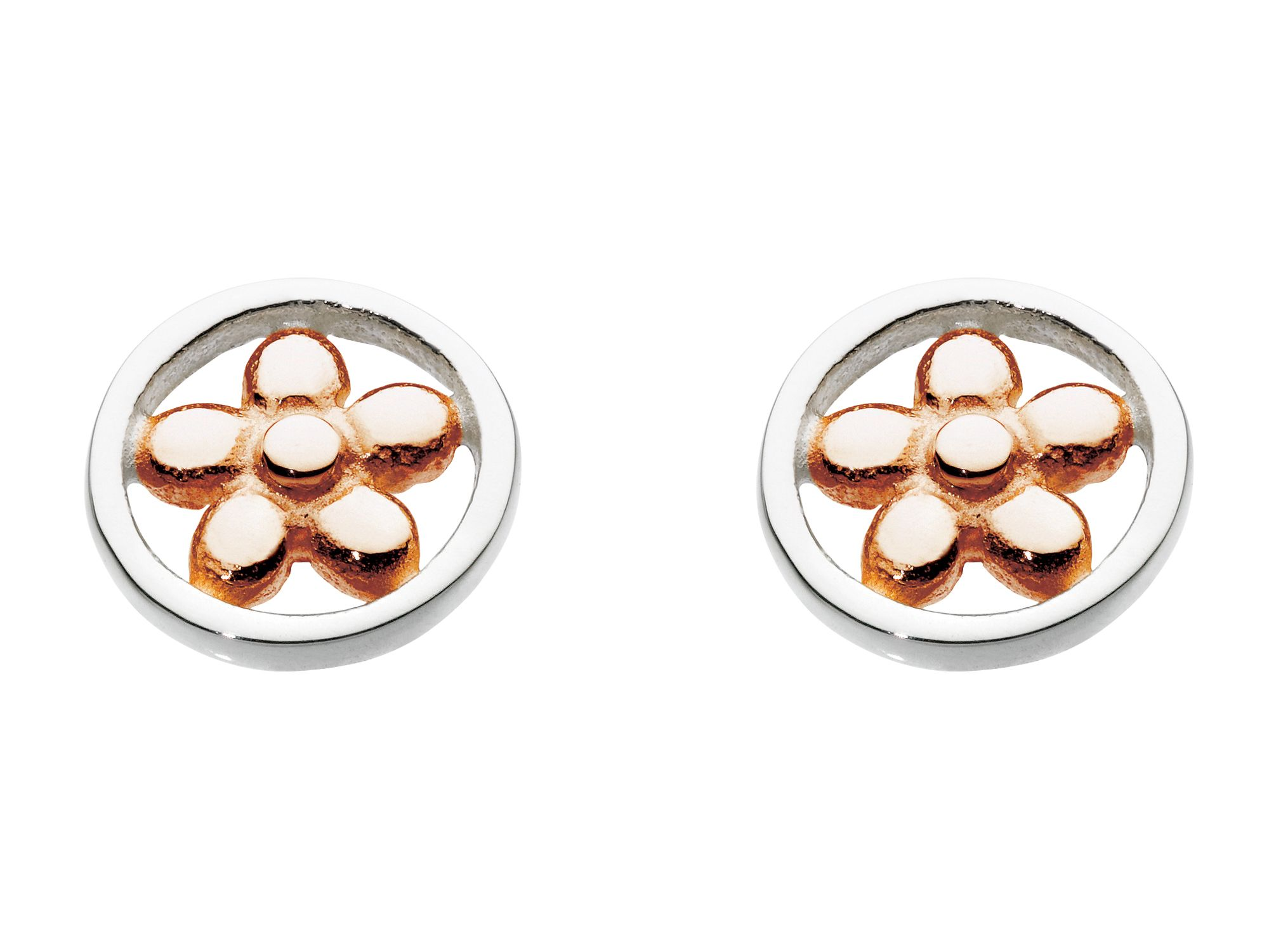 Rose gold plate open flower round earrings