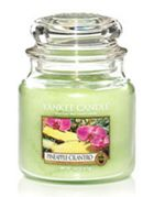 Yankee Candle Medium jar pineapple cilantro